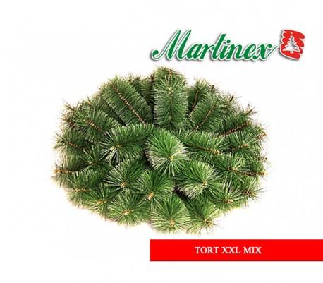 Tort XXL mix